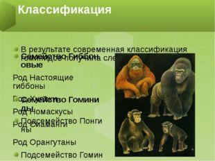 В результате современная классификация гоминидов получиласледующий вид: Семе