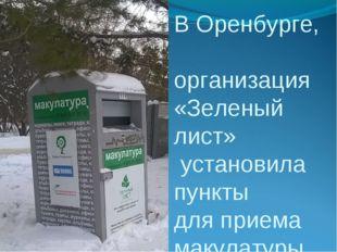 В Оренбурге, организация «Зеленый лист» установила пункты для приема макулату