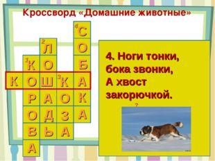 Кроссворд «Домашние животные» 1 2 3 4 К 4. Ноги тонки, бока звонки, А хвост з