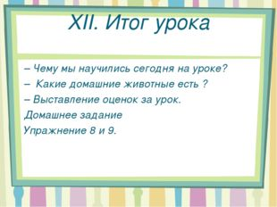 XII. Итог урока – Чему мы научились сегодня на уроке? – Какие домашние животн