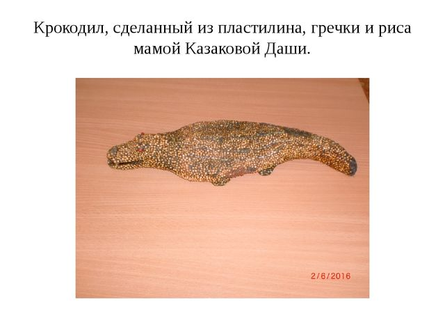 Крокодил, сделанный из пластилина, гречки и риса мамой Казаковой Даши.