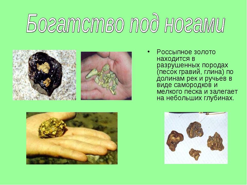 Россыпное золото находится в разрушенных породах (песок гравий, глина) по дол...