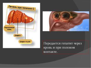Передается гепатит через кровь и при половом контакте.