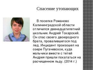Спасение утопающих В поселке Романово Калининградской области отличился двен