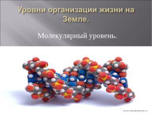 Молекулярный уровень.