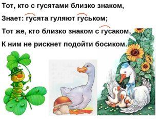 Тот, кто с гусятами близко знаком, Знает: гусята гуляют гуськом; Тот же, кто