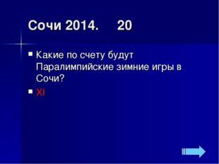 Сочи 2014. 20 Какие по счету будут Паралимпийские зимние игры в Сочи? XI