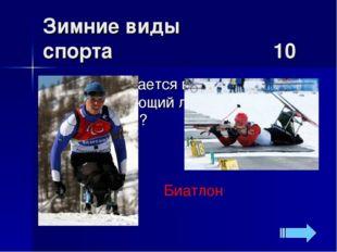 Зимние виды спорта 10 Биатлон Как называется вид спорта, объединяющий лыжную