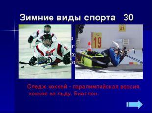 Зимние виды спорта 30 Следж хоккей - паралимпийская версия хоккея на льду. Би