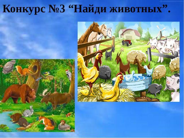 """Конкурс №3 """"Найди животных""""."""