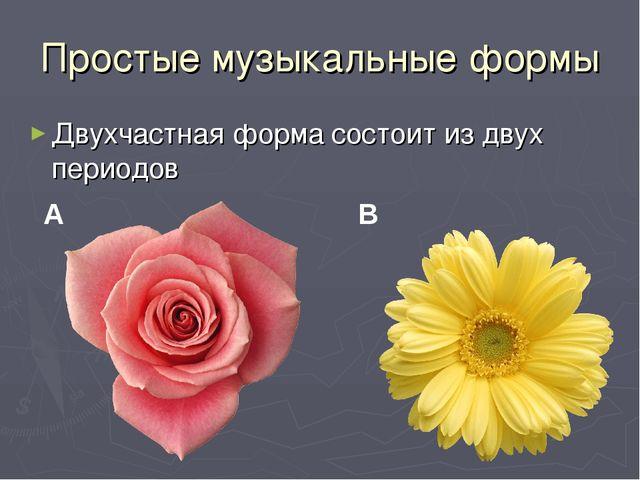 Простые музыкальные формы Двухчастная форма состоит из двух периодов A B