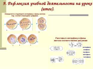 9. Рефлексия учебной деятельности на уроке (итог).