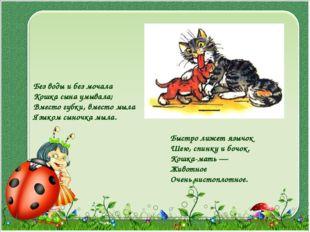 Без воды и без мочала Кошка сына умывала; Вместо губки, вместо мыла Языком сы