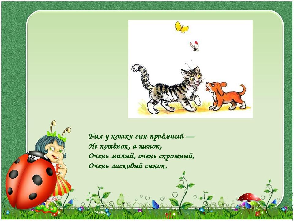 Был у кошки сын приёмный — Не котёнок, а щенок, Очень милый, очень скромный,...