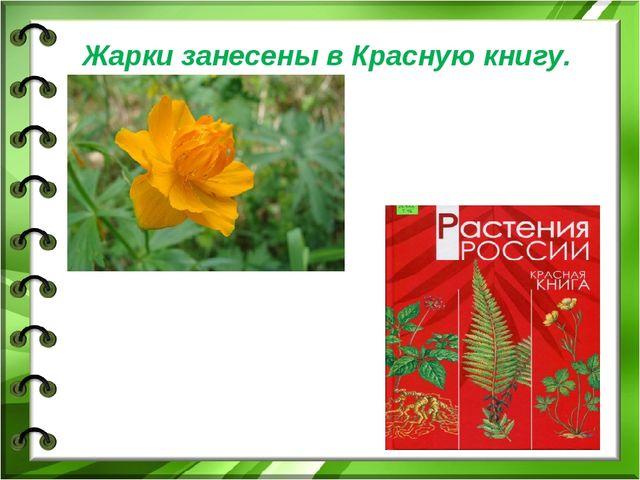 Жарки занесены в Красную книгу.