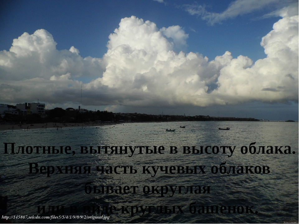 Плотные, вытянутые в высоту облака. Верхняя часть кучевых облаков бывает окру...
