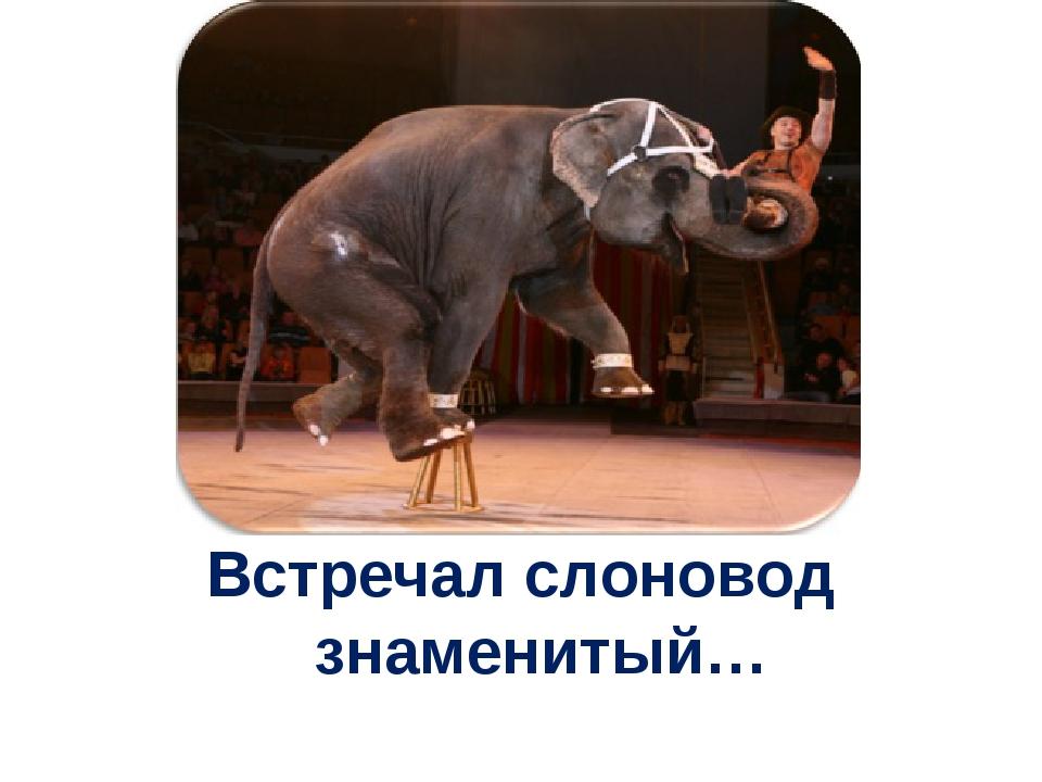 Встречал слоновод знаменитый…