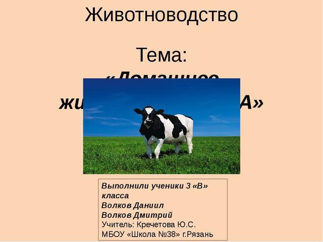 Животноводство Тема: «Домашнее животное-КОРОВА» Выполнили ученики 3 «В» класс...