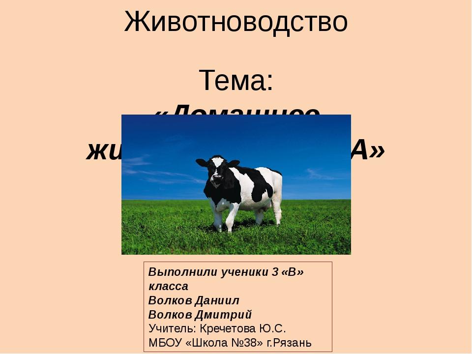 корова описание для детей