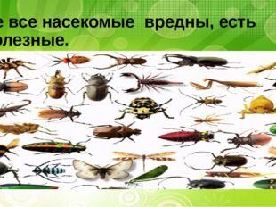 Не все насекомые вредны, есть полезные.
