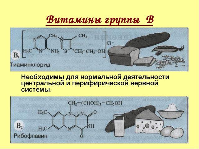 Витамины группы В Необходимы для нормальной деятельности центральной и периф...