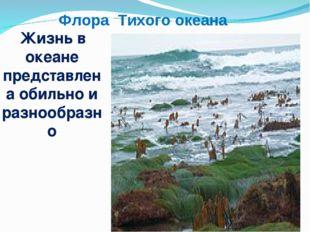 Флора Тихого океана Жизнь в океане представлена обильно и разнообразно