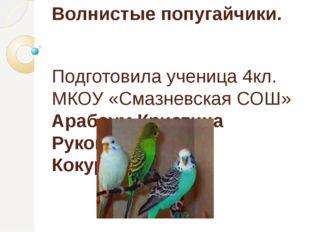 Волнистые попугайчики. Подготовила ученица 4кл. МКОУ «Смазневская СОШ» Арабау