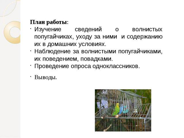 План работы: Изучение сведений о волнистых попугайчиках, уходу за ними и соде...