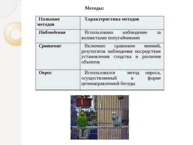 Методы: Название методов Характеристика методов Наблюдения Использовано набл...