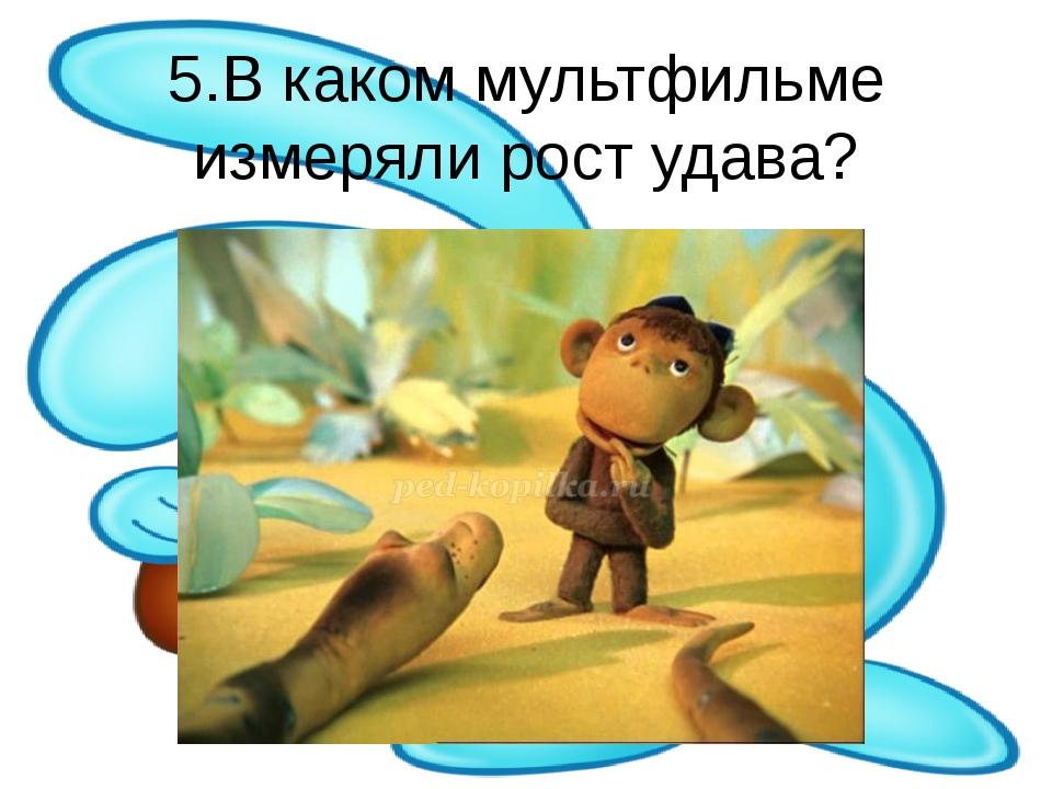 5.В каком мультфильме измеряли рост удава?