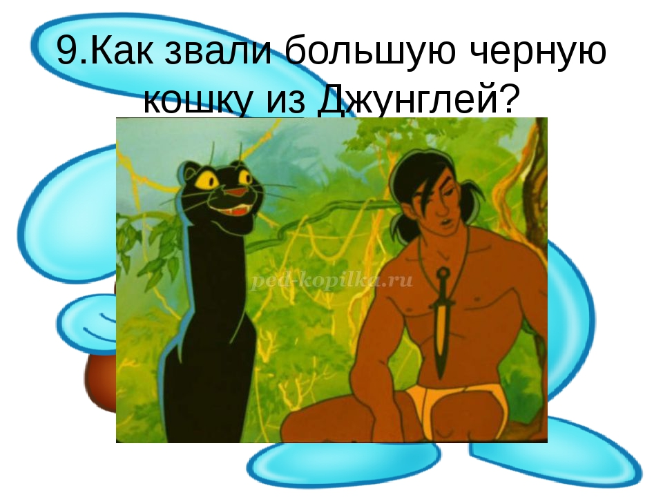 9.Как звали большую черную кошку из Джунглей?