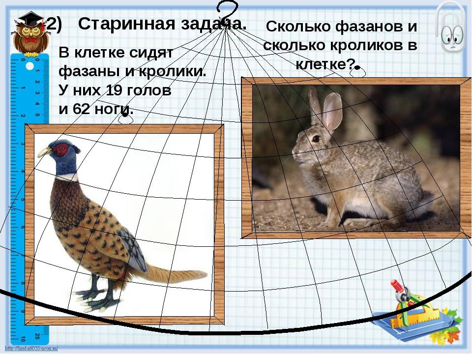 В клетке сидят фазаны и кролики. У них 19 голов и 62 ноги. 2) Старинная задач...
