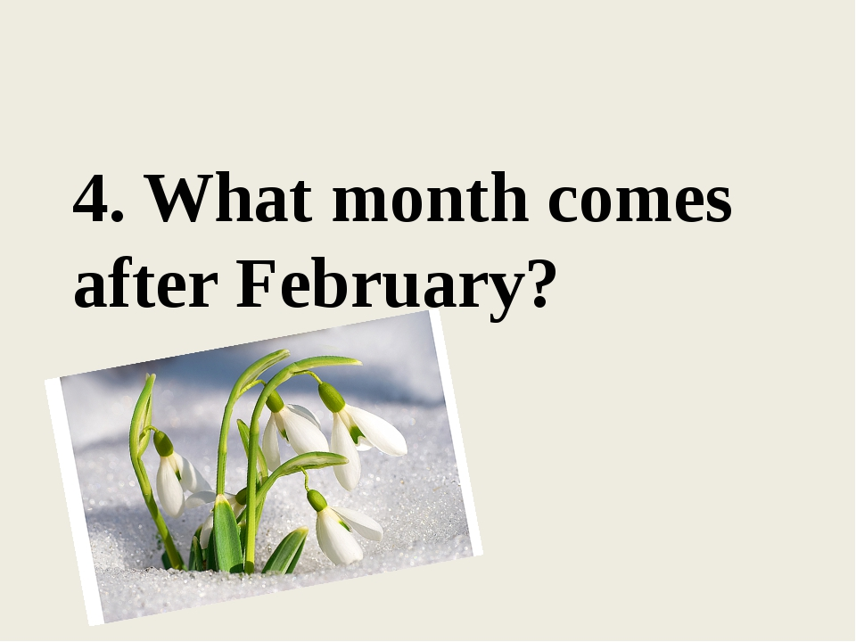 4. What month comes after February?