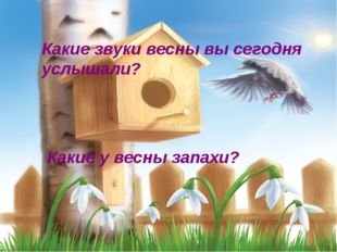 Какие звуки весны вы сегодня услышали? Какие у весны запахи?
