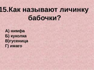 15.Как называют личинку бабочки? А) нимфа Б) куколка В)гусеница Г) имаго