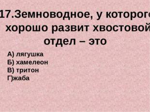 17.Земноводное, у которого хорошо развит хвостовой отдел – это А) лягушка Б)