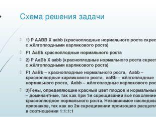 Схема решения задачи 1) P AABB X aabb (красноплодные нормального роста скрест