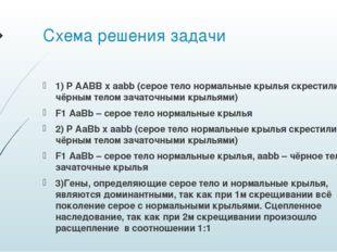 Схема решения задачи 1) P AABB x aabb (серое тело нормальные крылья скрестили