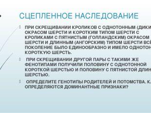 СЦЕПЛЕННОЕ НАСЛЕДОВАНИЕ ПРИ СКРЕЩИВАНИИ КРОЛИКОВ С ОДНОТОННЫМ (ДИКИМ) ОКРАСОМ