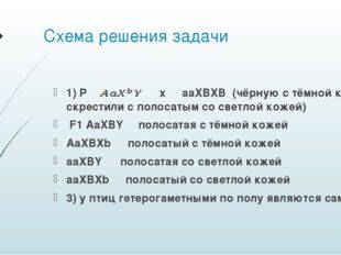 Схема решения задачи 1) P ♀ x ♂ aaXBXB (чёрную с тёмной кожей скрестили с пол