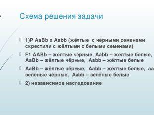 Схема решения задачи 1)P AaBb x Aabb (жёлтые с чёрными семенами скрестили с ж