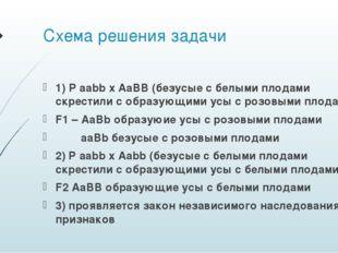 Схема решения задачи 1) P aabb x AaBB (безусые с белыми плодами скрестили с о