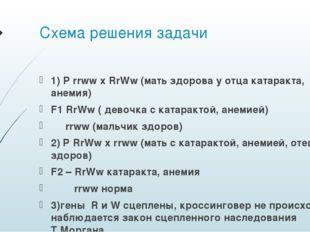 Схема решения задачи 1) P rrww x RrWw (мать здорова у отца катаракта, анемия)