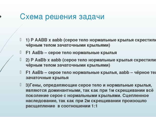 Схема решения задачи 1) P AABB x aabb (серое тело нормальные крылья скрестили...