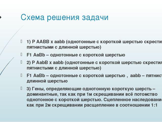 Схема решения задачи 1) P AABB x aabb (однотонные с короткой шерстью скрестил...