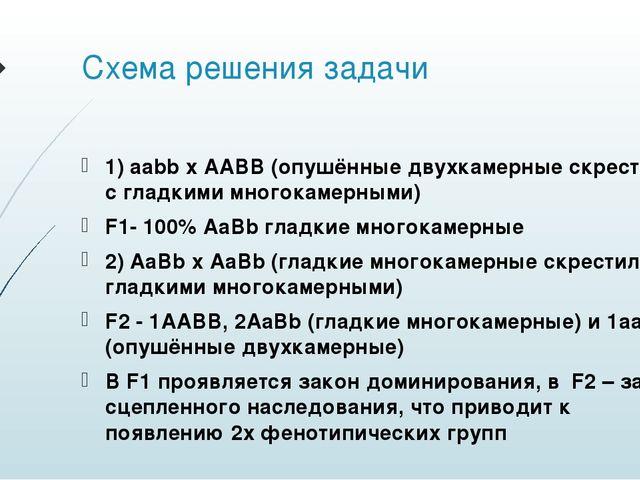 Схема решения задачи 1) aabb x AABB (опушённые двухкамерные скрестили с гладк...