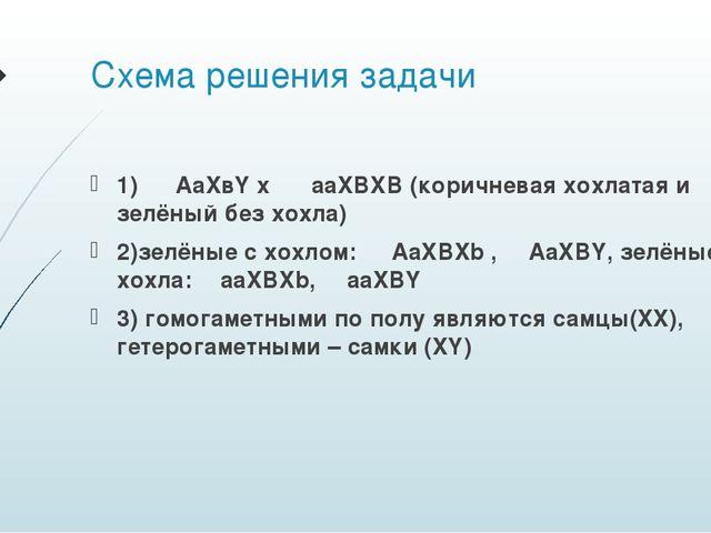 Схема решения задачи 1) ♀ AaXвY x ♂ aaXBXB (коричневая хохлатая и зелёный без...
