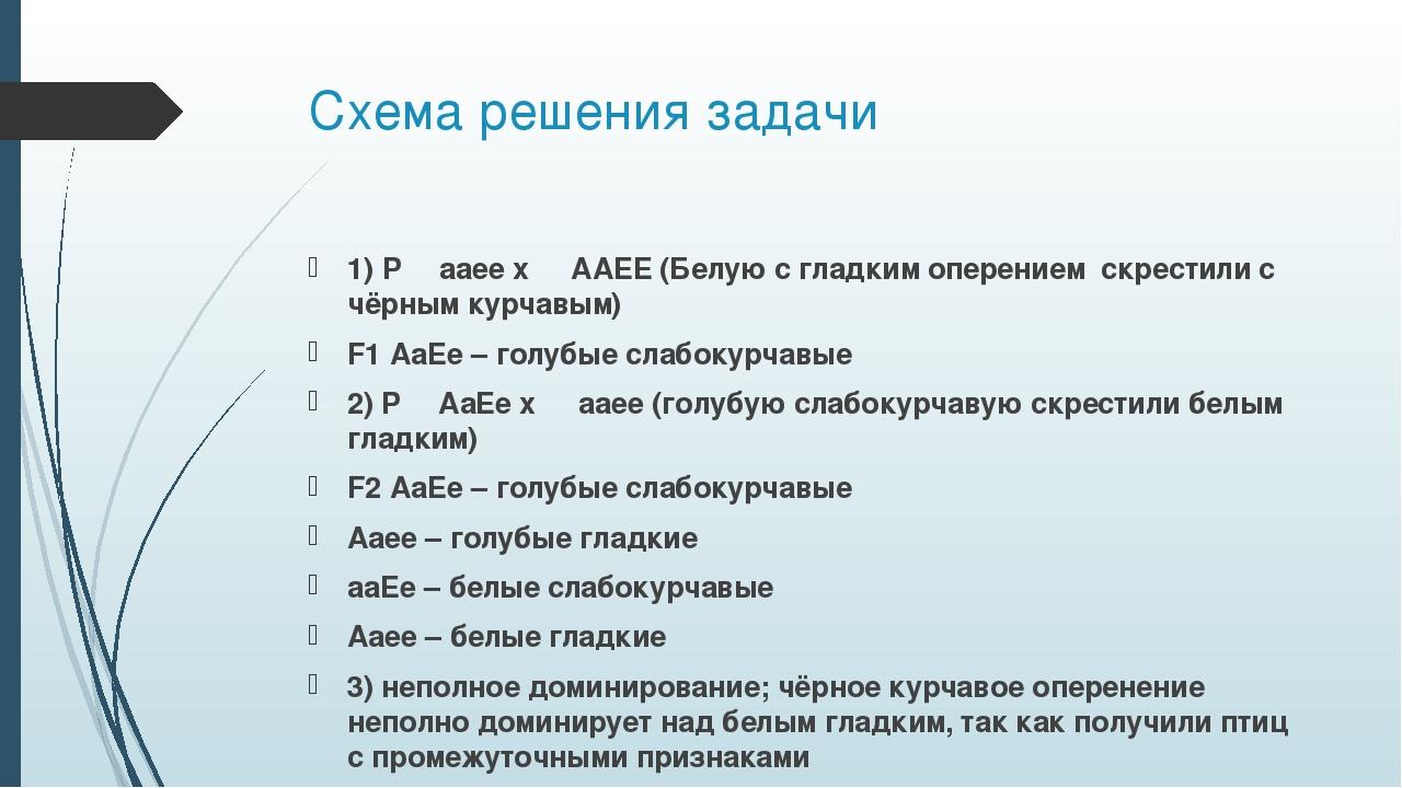 Схема решения задачи 1) P ♀ aaee x ♂ AAEE (Белую с гладким оперением скрестил...