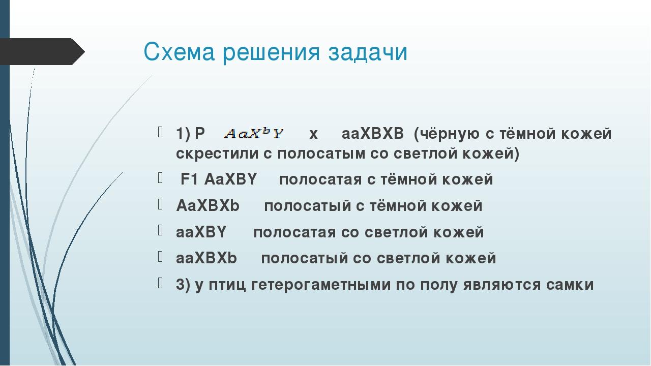 Схема решения задачи 1) P ♀ x ♂ aaXBXB (чёрную с тёмной кожей скрестили с пол...