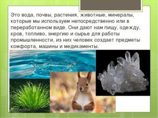 Это вода, почвы, растения, животные, минералы, которые мы используем непосред